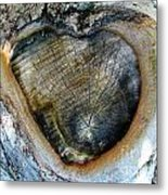 Knot Love Metal Print