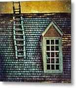 Ladder On Roof Metal Print