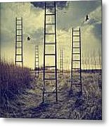 Ladders Reaching To The Sky In A Autumn Field Metal Print