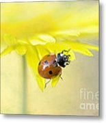 Lady In Yellow Metal Print by Jacky Parker