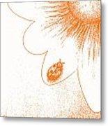 Ladybug On Daisy By Shawna Erback Metal Print