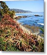 Laguna Beach Coastline Photo Metal Print