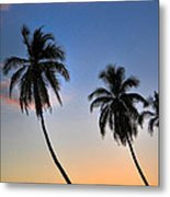 Lahaina Palms Metal Print by Kelly Wade