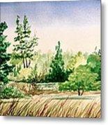 Lake County Landscape Metal Print