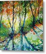 Lake Forest Hills Metal Print