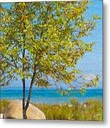 Lake Huron Seashore Metal Print