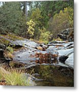 Lake In The Forest 1 Metal Print