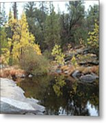 Lake In The Forest Metal Print by Naxart Studio