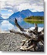 Lake Kathleen In Kluane National Park Metal Print