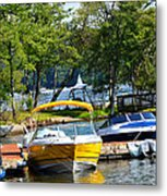 Lake Living 2 Metal Print