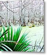 Lake Martin Swamp View Metal Print