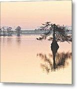 Lake Mattamuskeeet Sunrise Metal Print