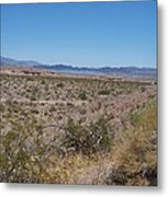Lake Mead Nevada Metal Print