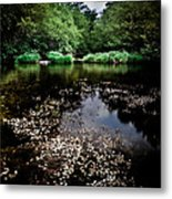 Lake Of Spirits Metal Print