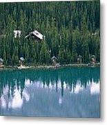 Lake Ohara Lodge And Cabins Metal Print by Michael Melford