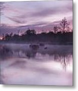 Lake Pearly Metal Print