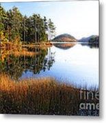 Lake Reflections In Acadia Metal Print