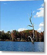 Lake Rousseau Metal Print
