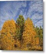 Lake Tahoe Aspen Sky Metal Print