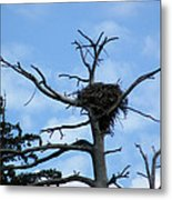 Lake Tahoe Eagle Nest Metal Print