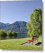 Lakefront With Mountain Metal Print