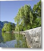 Lakefront With Trees Metal Print