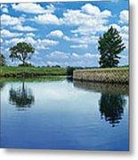 Lakeridge Duck Pond Metal Print