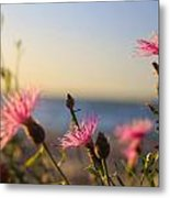Lakeside Flowers Metal Print