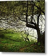 Lakeside View 2 Metal Print