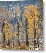 Lamar Valley In The Fall Metal Print