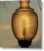 Lamp Light And Limb Metal Print