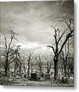 Land Of The Lost Spirits Metal Print