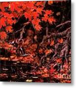 Land Of The Maple Metal Print