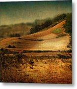 Landscape #20. Winding Hill Metal Print