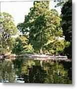 Landscape Tree Reflections Metal Print