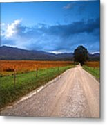 Lane Across Valley Metal Print