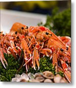 Langoustines At The Market Metal Print