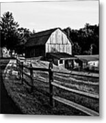 Langus Farms Black And White Metal Print