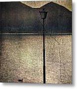 Lantern At The Lake Metal Print by Joana Kruse