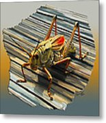 Large Grass Hopper Metal Print