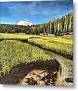 Lassen Meadows Metal Print