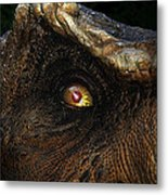 Last Day Of The Jurassic Metal Print