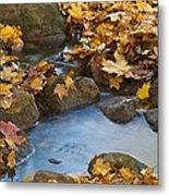 Last Signs Of Autumn 0438 Metal Print