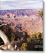 Late Afternoon At The South Rim Metal Print