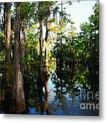 Late Afternoon At The Swamp Metal Print
