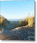 Late Afternoon Light Waikuku Beach Metal Print