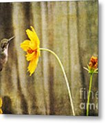 Late Summer Delight Metal Print