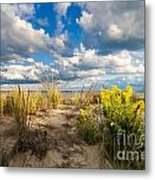 Late Summer Dunes Ocean City Metal Print