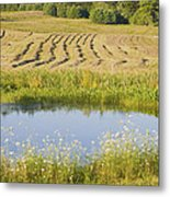 Late Summer Hay Being Harvested In Maine Canvas Poster Print Metal Print