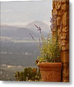 Lavender And Rock Metal Print